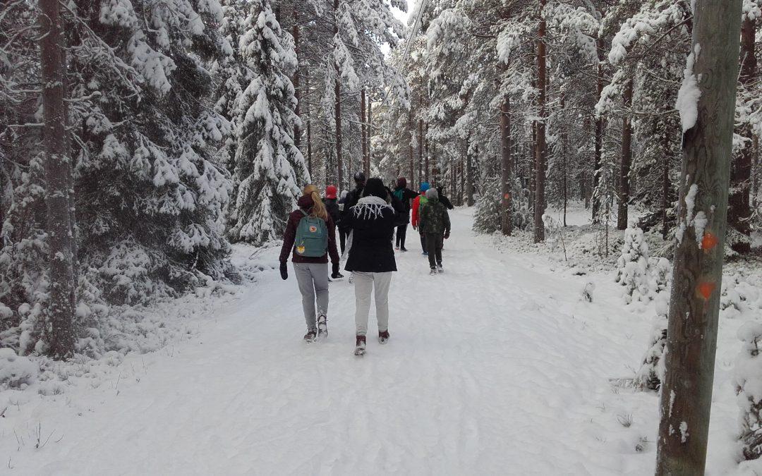 Mobiilisti metsään