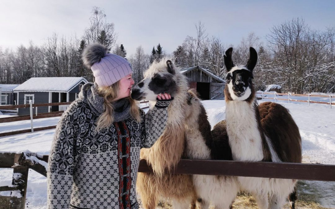 Arkadia on onnellisten eläinten koti