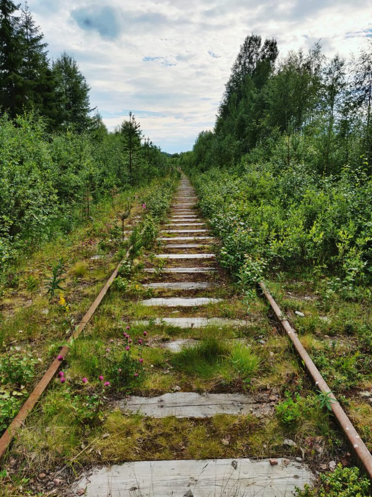 Vanha junarata, joka kasvaa jo heinää.