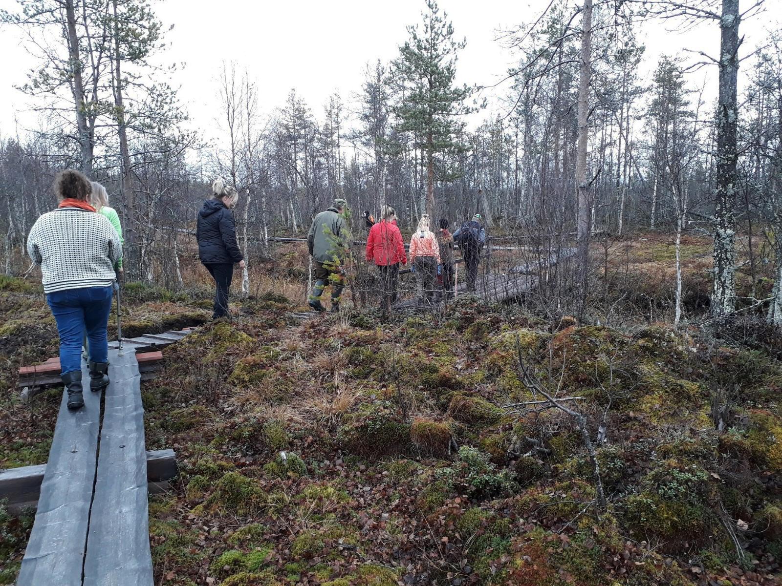 Ahvenselkäläisiä pitkospuilla Aapajärven kosteikolla.