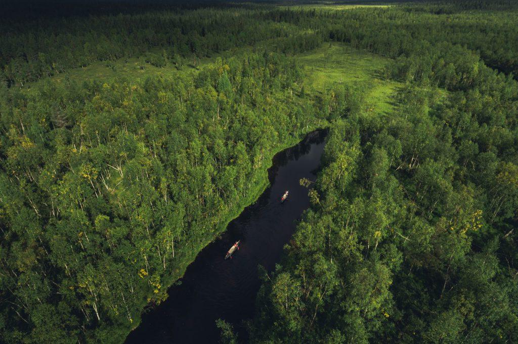 Kesäinen metsä, joella kanootteja.