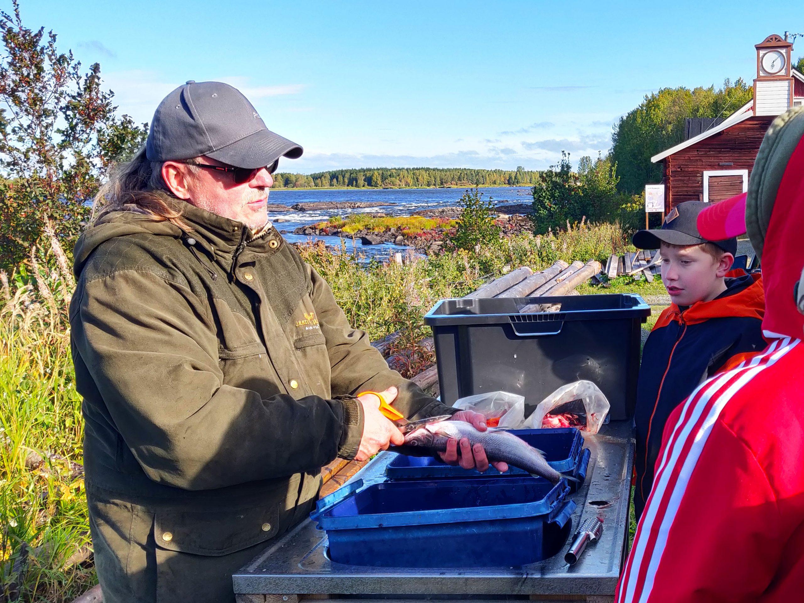 Nuorille näytetään kalanperkuuta.